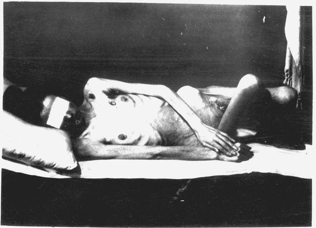 Auschwitz-Perl-Holocaust-Dark-History-German-Jewish